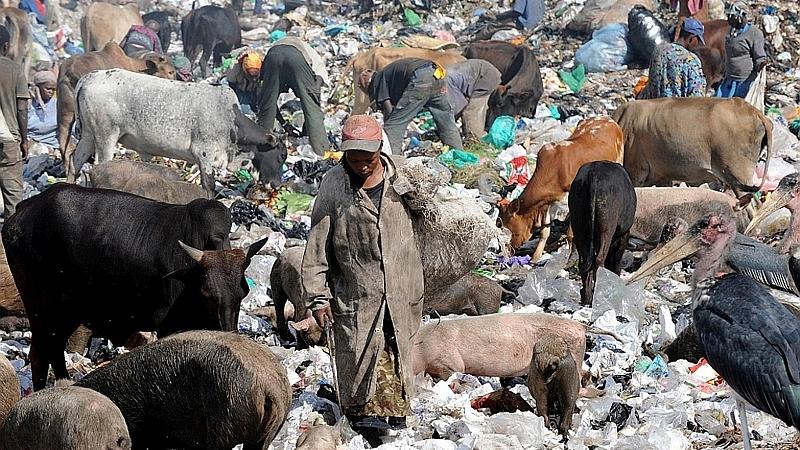 La discarica di Dandora (Nairobi)