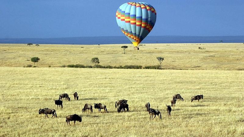Safari in mongolfiera