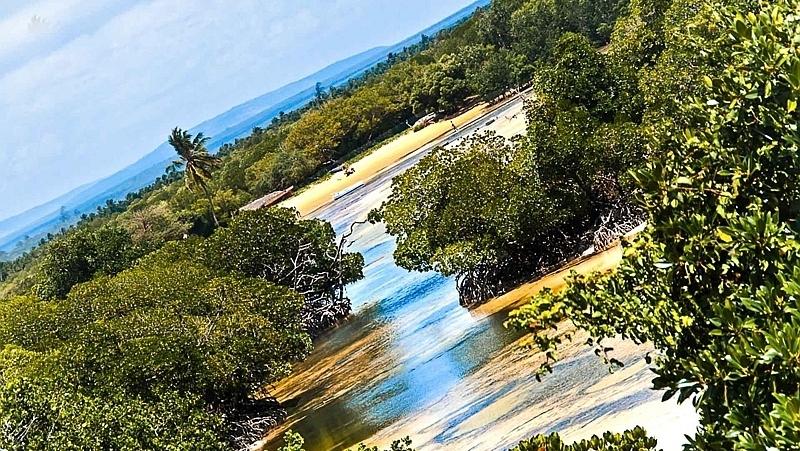 Mida Creek Watamu