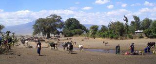 Tribù Masai sulle rive del fiume Southern Ewaso Ng'iro