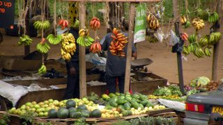Fruit of Kenya - Food and drink