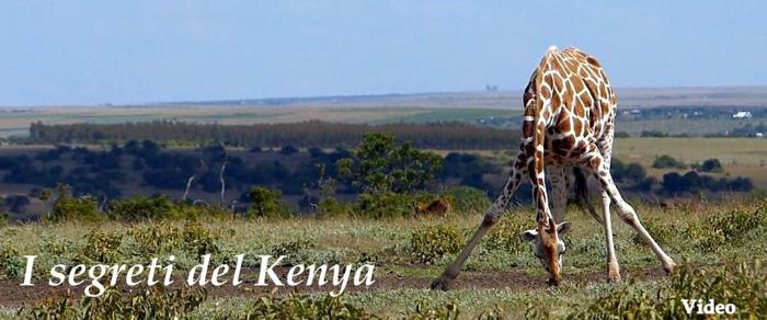 I segreti del Kenya