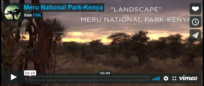 Kenya-Parco Nazionale Meru
