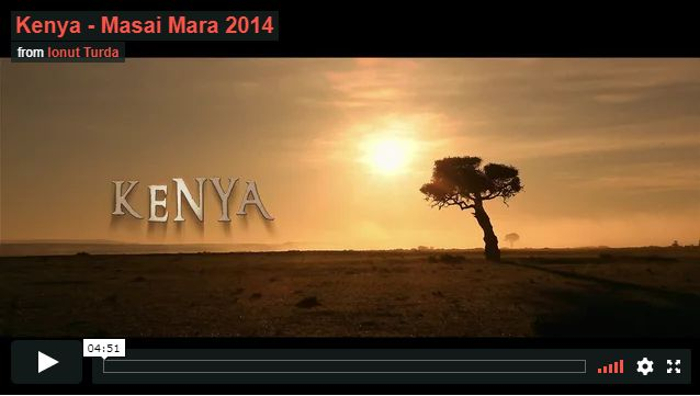 Kenya-Riserva Masai Mara