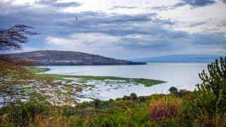 Morfologia del Kenya-Lago Naivasha Kenya-Contea di Nakuru