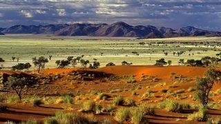Kenya Safari-La selvaggia savana africana