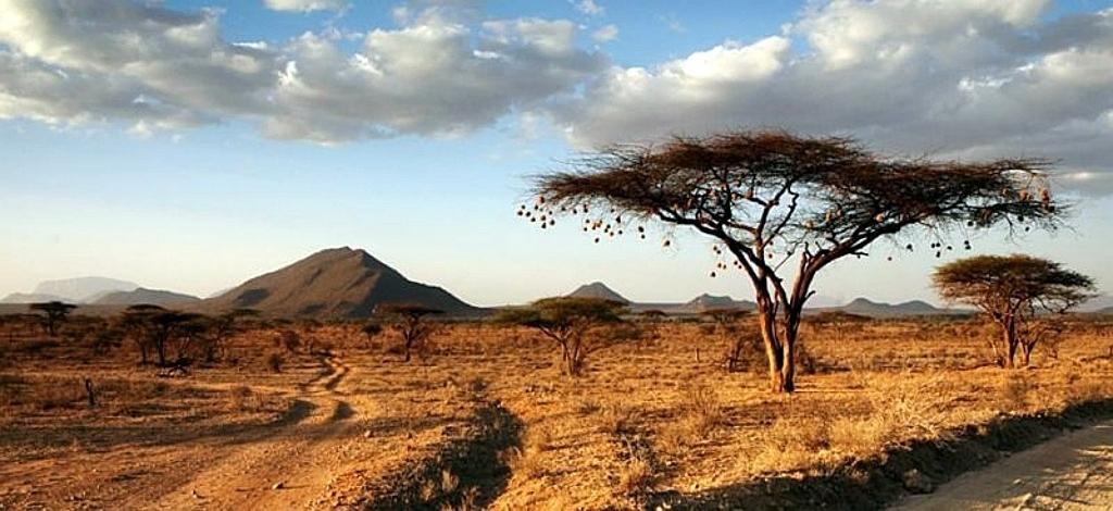Geografia del Kenya-Kenya landscape