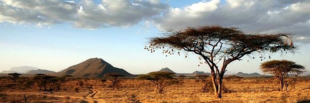 Preambolo Kenya Vacanze e Turismo