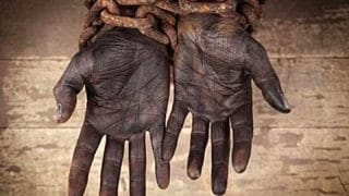 Olocausto Africano
